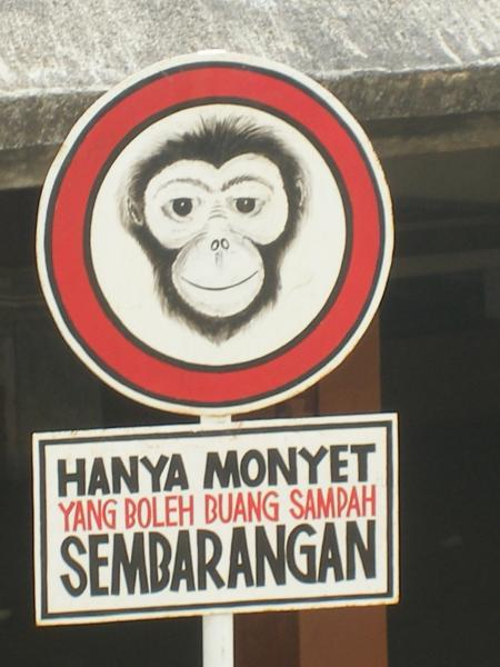 http://agushoe.files.wordpress.com/2009/12/buang-sampah-sembarangan.jpg