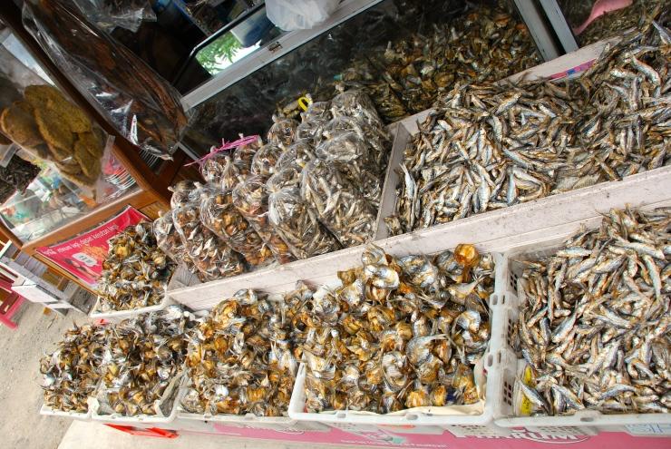Ikan Bilis Danau Singkarak