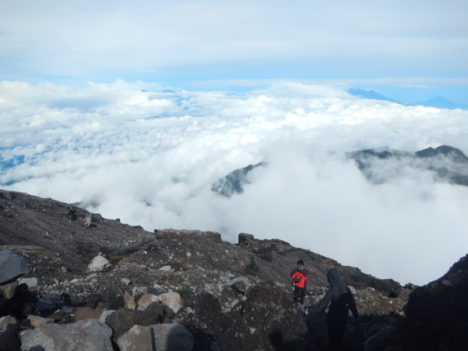 Typical Semeru Trail