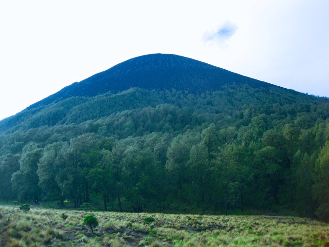 Semeru View from Kalimati (picture of Ari Siaga)