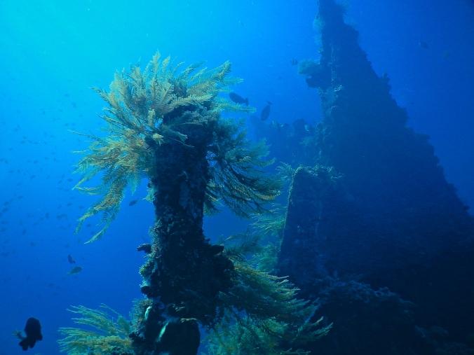 USS Liberty Wreck at Tulamben, Bali