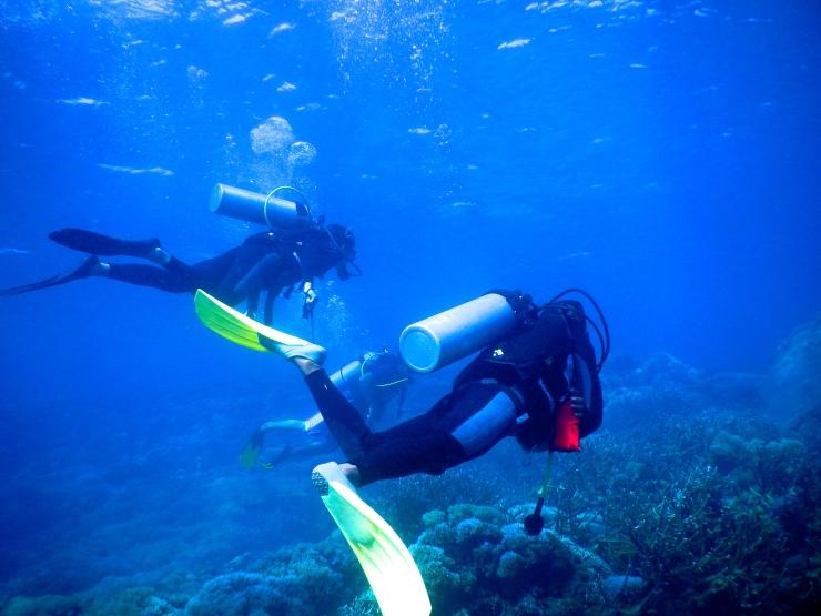 Diving in Gili Kondo