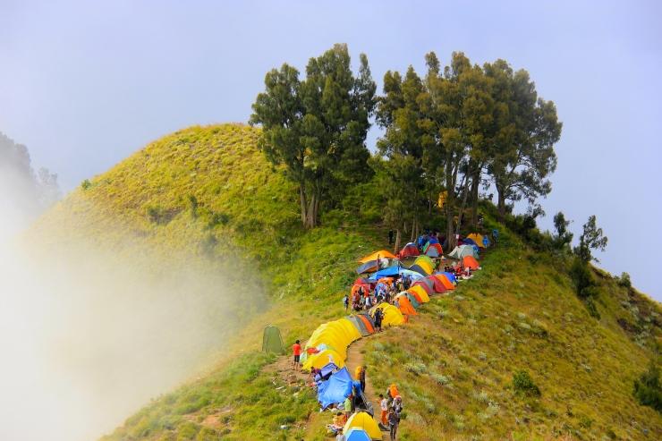 Campsite of Sembalun Caldera Rim